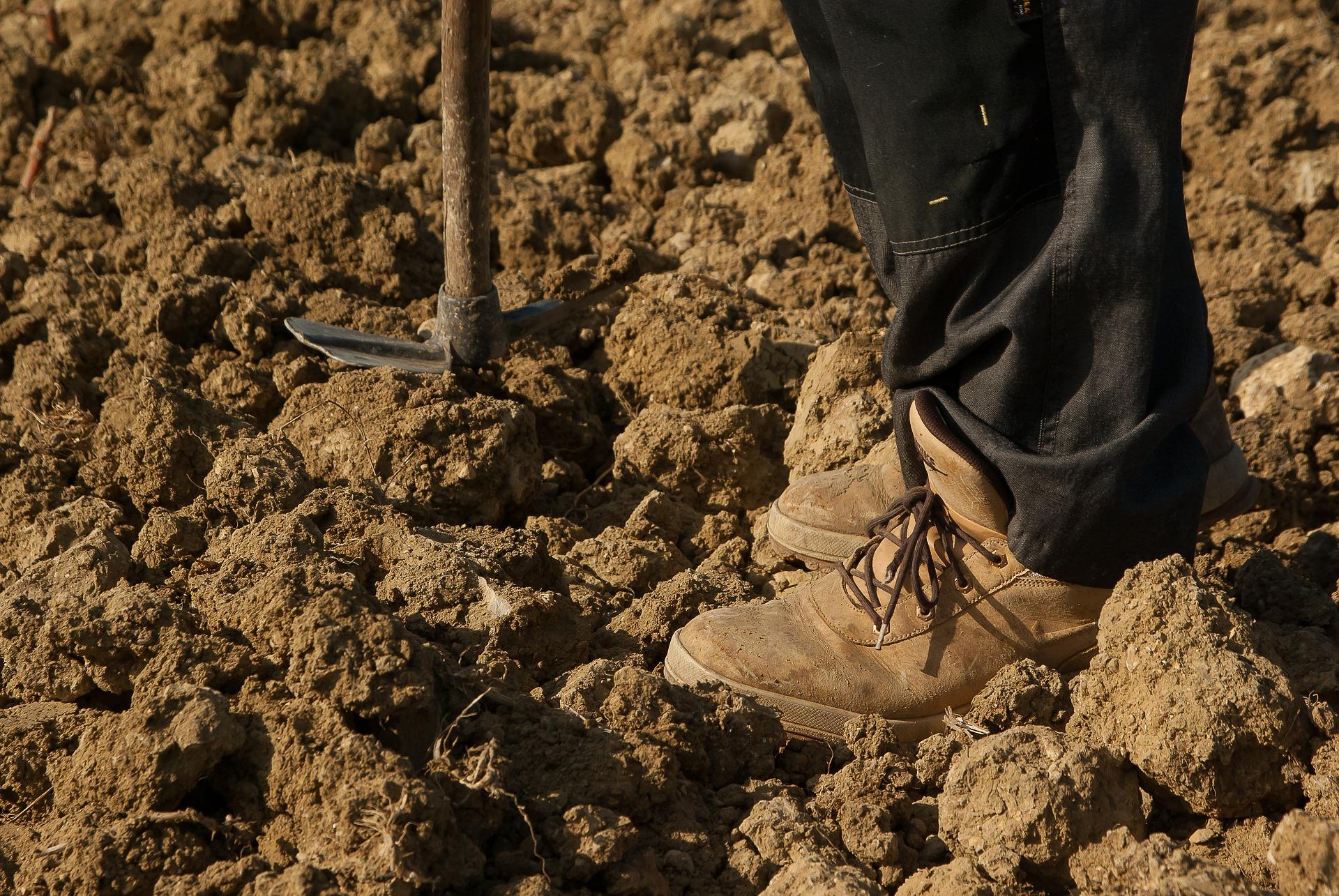 pieds de travailleur dans la terre