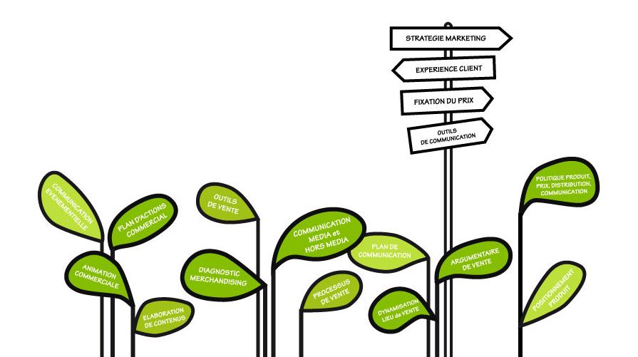 Services conseil commercialisation en circuits courts agricoles